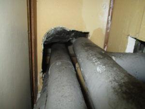 洗面所裏の配管ネズミ侵入口