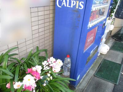 自動販売機裏ネズミ侵入