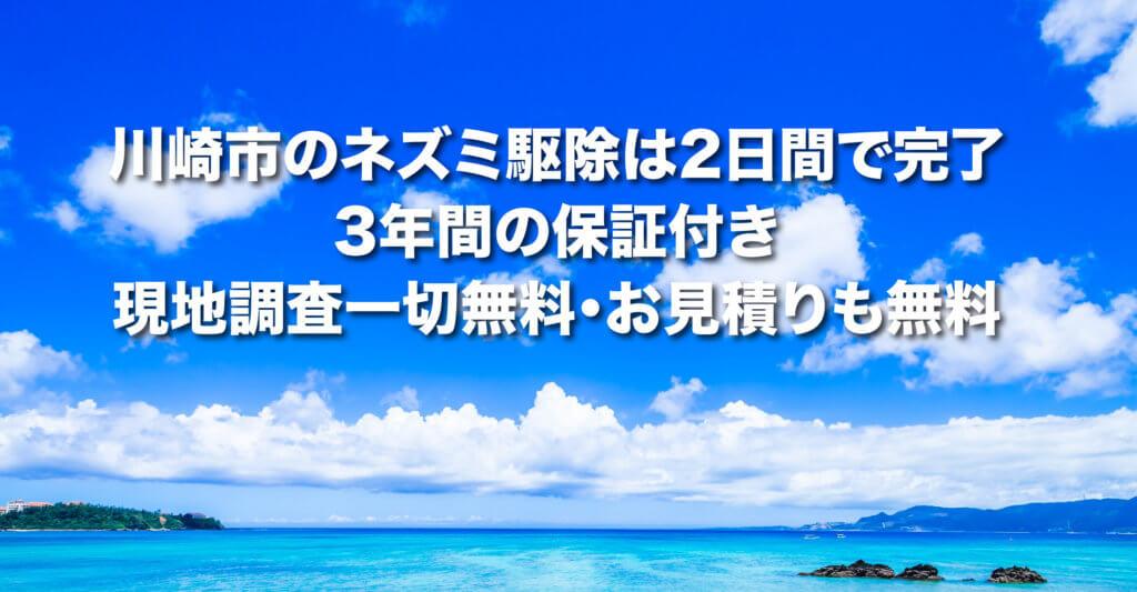 川崎のねずみ駆除は2日間で完了3年間の保証付き。川崎市のねずみ駆除事例もご紹介しています。