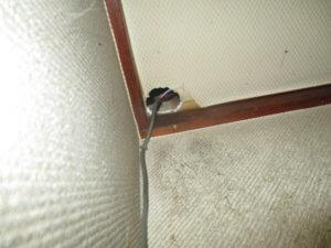 武蔵野市のネズミ駆除事例