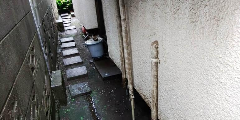 東京一戸建てネズミ駆除